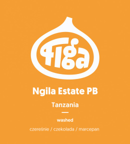 Figa Coffee - Tanzania Ngila Estate PB- 250g